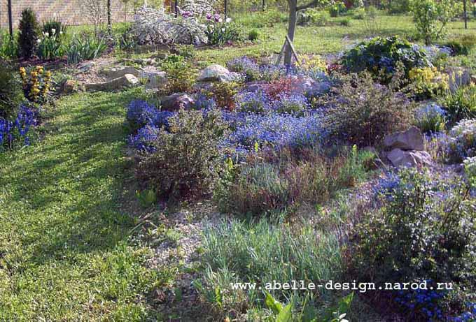 Природный сад фото